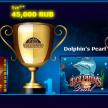 Новые победители казино Вулкан 24